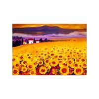 法国让·米歇尔 限量版画《风中的向日葵》无框 70x50cm 装饰画